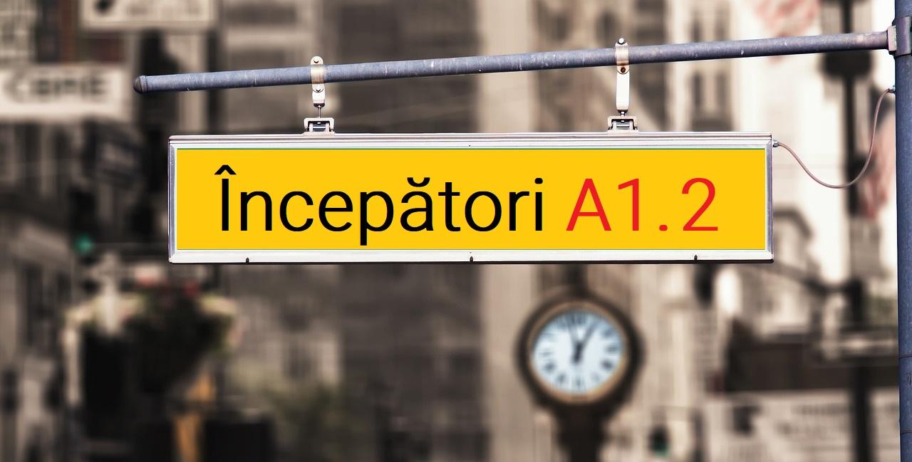 Curs intensiv de vara Incepatori A1.2