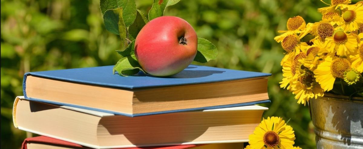 promotie 30% la cursuri de limba germana vara 2018